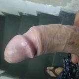 Moreno_galobranco